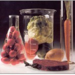 test tube food