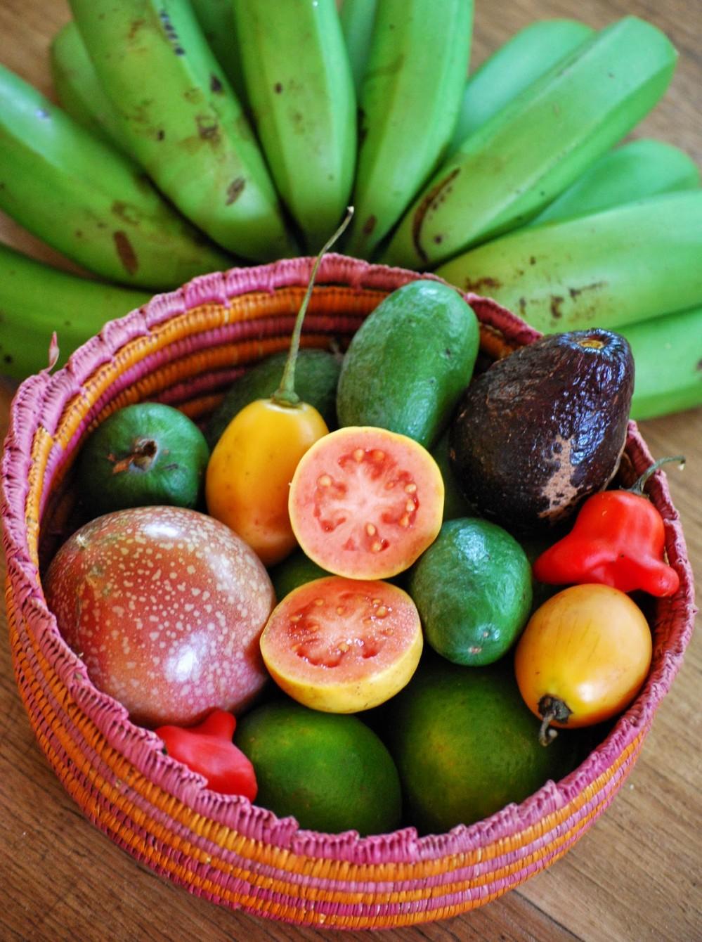 fruits1-999x1340